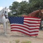 Old-glory-boys2-500x382