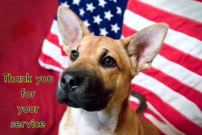 Happy Memorial Day Dog And Cat Images