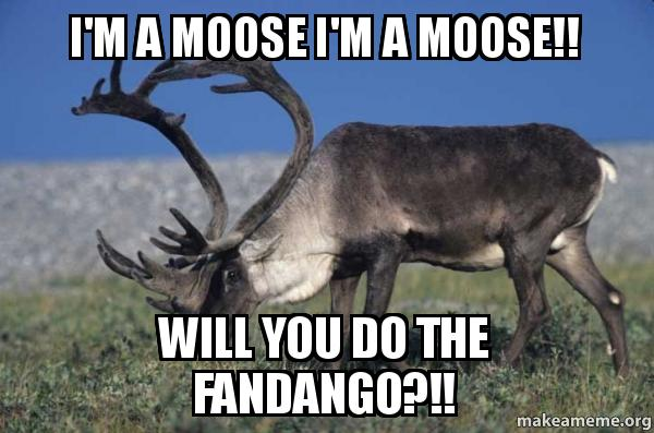 Funny Reindeer Meme : Captioned inotternews.com part 2